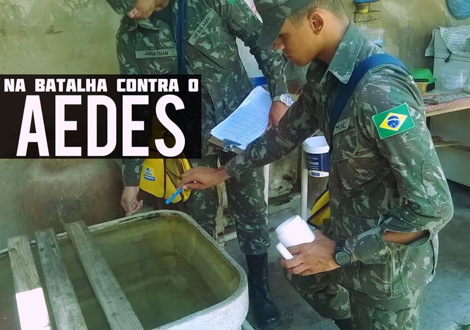 Em limbo regulatório, mosquito Aedes transgênico avança no Brasil