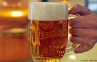 Cerveja faz bem para a saúde?
