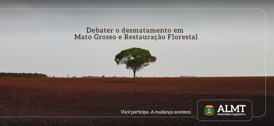 Audiência pública vai debater os impactos do desmatamento em Mato Grosso