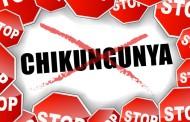 Dolorosa e duradoura, 'chikungunya vai ser surpresa maior que zika', diz pesquisador