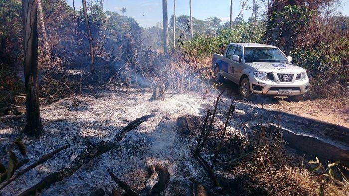 Em 11 dias, Estado e munícipios atenderam 194 ocorrências de queimadas