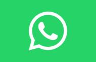 WhatsApp vai lançar o recurso 'desenviar'! Veja como funciona