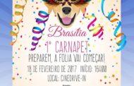 Carnaval de Brasília vai contar com bloco de rua para cachorros
