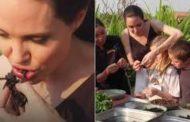Se cuida, Bela Gil. Angelina Jolie come aranha e escorpião