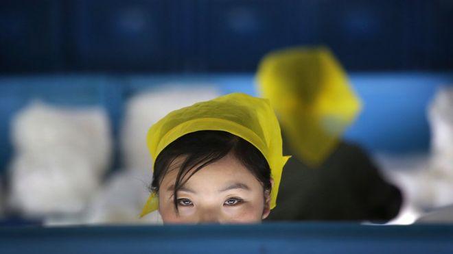 Quase um terço de mulheres e homens no Brasil prefere que elas não trabalhem fora