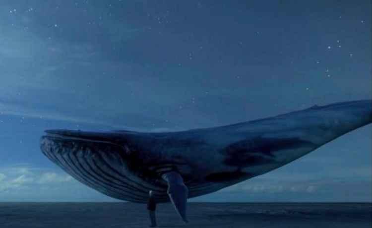 OAB pede cerco rigoroso ao game suicida Baleia Azul