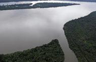 Senado ratifica redução na proteção de áreas de conservação na Amazônia