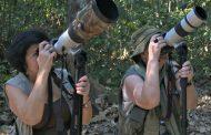 Amazônia MT: Estrangeiros e passarinheiros são principais turistas da região Norte