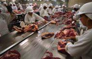 Brasil proíbe cinco frigoríficos de exportar para os EUA