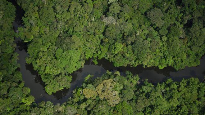 Temer cede à pressão e congela por 120 dias decisão sobre reserva amazônica