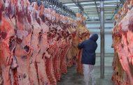 Rússia anuncia restrições temporárias à carne suína e bovina do Brasil