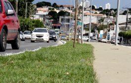 Via dos Ipês amarelos: Avenida Mato Grosso está pronta !