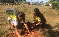 Projeto Verde Novo plantará e distribuirá mudas no Parque das Águas