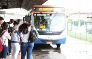 Novas linhas e novos veículos irão melhorar o transporte coletivo