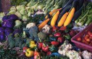 Boatos sobre alimentos que curam ou causam câncer são desmentidos em cartilha do Inca