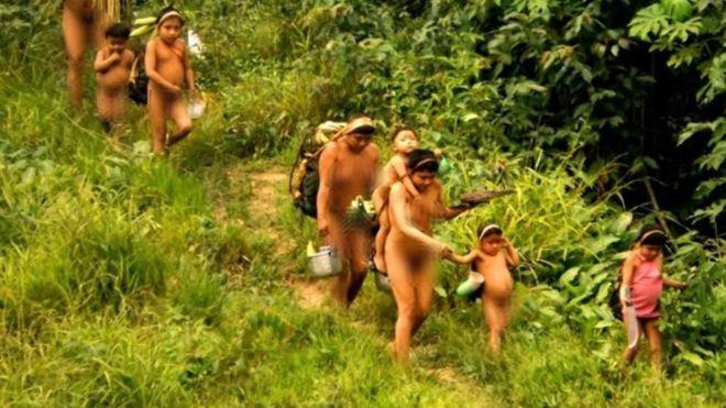 Governo inicia megaexpedição para se aproximar de índios isolados no Amazonas