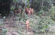 Expedição a índios isolados teve 'contato pacífico e emoção no reencontro de parentes', diz Funai