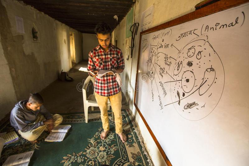 Na educação indiana, teoria e prática caminham juntas