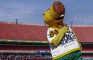 Ingressos, internet e furto: os problemas de organização da Copa América