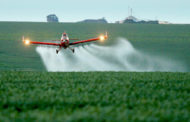 Governo bate recorde de liberação de agrotóxicos em 10 anos