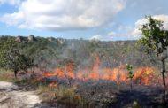 Números de focos de calor cresce e chega a 41% em Mato Grosso